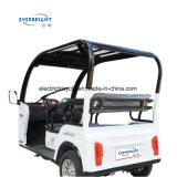 La carga de 3 ruedas de coche eléctrico del pasajero, triciclo eléctrico con precios baratos