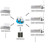 ДВМ SIM-банк с дистанционным SIM (SMB32)