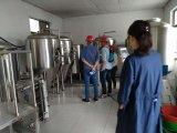De Chinese Nationale Waaier van de Apparatuur van de Brouwerij van het Bier van de Bevordering van de Dag van 50L aan 5000L per Partij