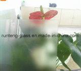 vidrio helado de calidad superior de la alta seguridad de 6m m con precio favorable
