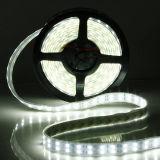 Luz de tira flexible de las filas dobles LED de RoHS 12V 5050 del Ce