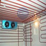 Heißes Verkauf modulares PU-Panel-montierender Typ Kaltlagerung für Fische