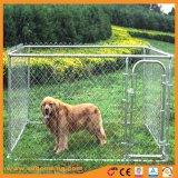電流を通されたチェーン・リンク犬の実行の犬小屋