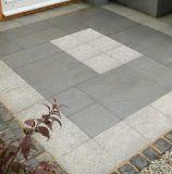Jardim que ajardina a pedra de pavimentação do granito