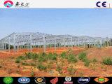 Struttura d'acciaio che costruisce la pianta di trasformazione dei prodotti alimentari strutturale del blocco per grafici, fabbrica dell'alimento
