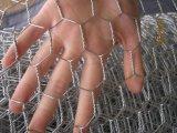 안핑 저가를 가진 공장에 의하여 직류 전기를 통하는 6각형 철사 그물세공