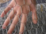 Anping-Fabrik galvanisierte sechseckige Draht-Filetarbeit mit niedrigerem Preis