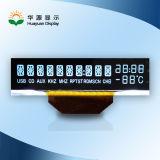 Écran LCD de segment de Va Tn de coutume