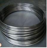 En espiral de acero inoxidable (bobina) del tubo/tubo de Pozo