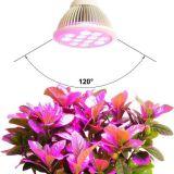 높은 능률적인 LED는 플랜트를 위해 가볍게 증가한다
