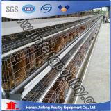 Kooi van de Laag van de Kip van de levering de Duurzame die voor de Landbouwbedrijven van Afrika wordt gebruikt