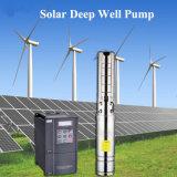 Pompa buona profonda sommergibile solare per coltivare