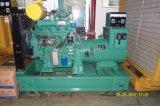 piccolo generatore elettrico del gruppo elettrogeno del motore diesel di 50kw Ricardo con Ce/ISO