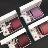 El regalo tejido telar jacquar del lazo de la seda del 100% fijó para los hombres