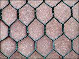 Tierrahmen-Ineinander greifen-Edelstahl-sechseckiger Maschendraht