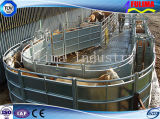 Горячая продажа оцинкованных панелей для крупного рогатого скота (FLM-CP-012)