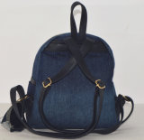 Nieuwste Dame Fashion Embroidery Jean Backpack