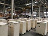 3т Vanbon подъемника - верхний подъемник торговой марки в Китае