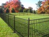 Haute qualité noir élégant clôture de sécurité