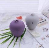 Diffusore dell'aroma di figura del vaso mini che si distende il diffusore dell'olio essenziale dell'umidificatore dell'aria del USB