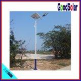Luz de calle solar de la batería 40W de Li de la alta calidad IP65