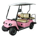 折られた後部席のゴルフクラブ車