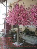 Piante artificiali di alta qualità dell'albero 300cm di Westeria alti