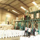Kenya 50t/24h de la línea de molienda de maíz