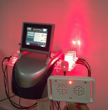650nm Lipolysis van de Laser van Lipolaser Lipo van 10 Peddels Machine