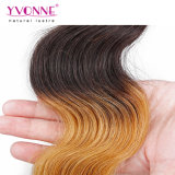 Yvonne 새로운 형식에 의하여 착색되는 머리 Ombre 머리 곱슬 머리