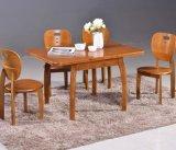 Feste hölzerne speisende Stuhl-moderne Art (M-X2362)