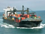 International & Professional Consolidate Shipping Service Local From China to Dubai