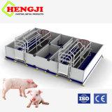 Cochon d'équipement de haute qualité pour l'énoncé des travaux de la Caisse de farrowing