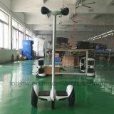 10 баланс Hoverboard колеса дюйма 2 франтовской с передвижным управлением APP