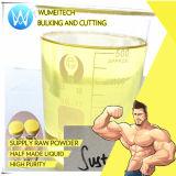 Polvo esteroide de Undecanoate de la testosterona de Hrt para mantener el nivel de la testosterona