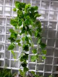 Plantas e flores artificiais da videira de suspensão Gu-Yy0879
