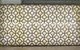 رخاميّ سقف زخرفة تصاميم في هند