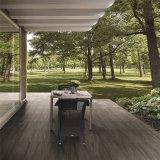 Sandstein-nicht Beleg-Porzellan-Fußboden-Fliese mit gutem Preis 600X600mm (BR6004)