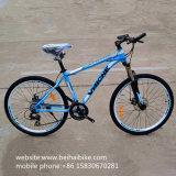 Bici de montaña barata del precio de la venta caliente