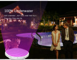 IP68 12V LED Swimmingpool-Licht-Unterwasserlichter PAR56