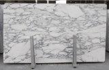 Décoration en marbre blanc italien de marbre Arabescato