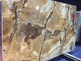 Madeira de pedra quartzito Azulejos Lajes Quartzito Amarelo do Brasil