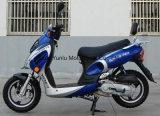 Tzm50c-1/Tzm150c-1 50cc/125cc/150cc 가스 스쿠터