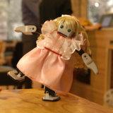 Горячая продажа интеллектуального образования DIY 3D-печати стержня робота