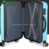 Customized Hot Salts Travel Suitcase Trolley Luggage Case Cabin Flying Case