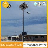 Fabricante de venta al por mayor en línea polo 6M 36W LED calle la luz solar con la cámara