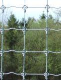 電流を通された鋼鉄によってファイルされる塀5フィートの