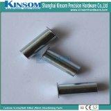 L'écrou hexagonal Thread d'INTERAL rivetage avec revêtement de zinc bleu