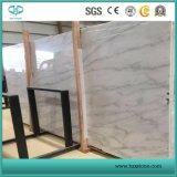 Het nieuwe Beeldhouw Witte Marmeren/Witte Marmer van de Parel