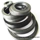 Vedação de Óleo para Motor / Máquina / equipamento (fabricante)